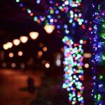Natale in Palestro: Favole, Spettacoli e Doni!